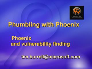 Phumbling  with Phoenix  Phoenix   and  vulnerability finding