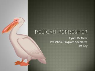 PELICAN REFRESHER