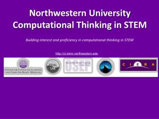 Northwestern University Computational Thinking in STEM