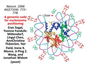 Nature. 2006 442(7104): 772–778. A genomic code for  nucleosome  positioning
