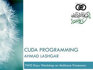 CUDA Programming Ahmad  Lashgar