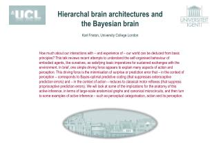 Hierarchal brain architectures and the Bayesian brain  Karl Friston, University  College London
