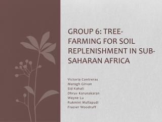 Group 6: Tree-Farming for Soil Replenishment in Sub-Saharan Africa