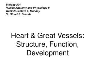 Biology 224 Human Anatomy and Physiology II Week 2; Lecture 1; Monday Dr. Stuart S. Sumida