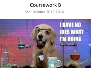 Coursework B