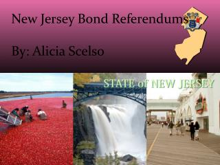New Jersey Bond Referendums By: Alicia  Scelso