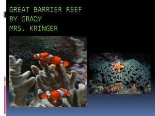 Great Barrier Reef by Grady Mrs.  Kringer