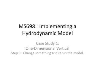 MS698:  Implementing a Hydrodynamic Model