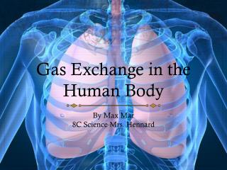 Gas Exchange in the Human Body