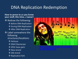 DNA Replication Redemption