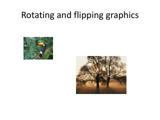 Rotating and flipping graphics