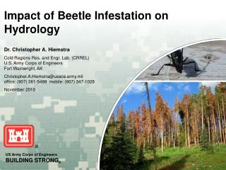 Impact of Beetle Infestation on Hydrology