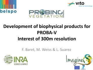 Development of biophysical products for  PROBA-V Interest  of 300m resolution