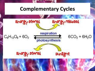 Complementary Cycles