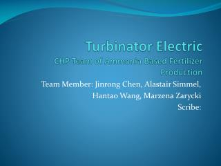 Turbinator  Electric CHP Team of Ammonia Based Fertilizer Production