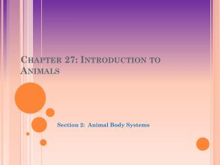 Chapter 27: Introduction to Animals