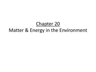 Chapter 20 Matter & Energy in the Environment