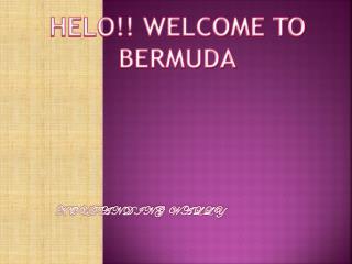 HELO!! WELCOME TO BERMUDA