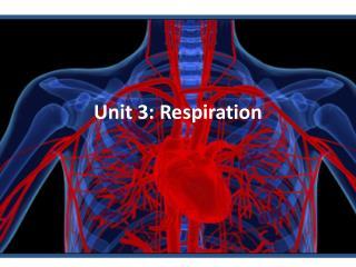 Unit 3: Respiration