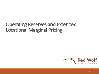 Operating Reserves and Extended Locational Marginal Pricing