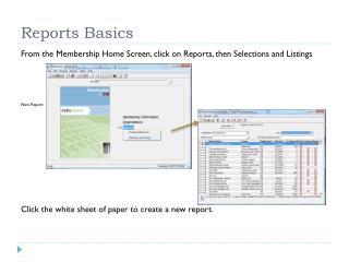 Reports Basics