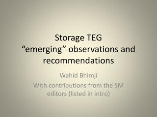 "Storage TEG ""emerging"" observations and recommendations"