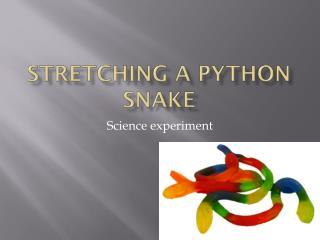 Stretching a python snake