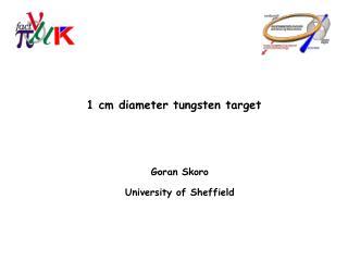 1 cm diameter tungsten target