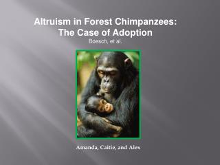Altruism in Forest Chimpanzees: The Case of Adoption Boesch , et al.