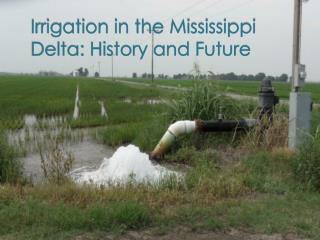 Irrigation in the Mississippi Delta: History and Future