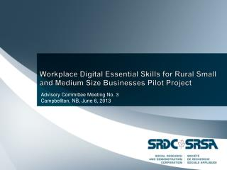 Workplace Digital Essential Skills for Rural Small and Medium Size Businesses Pilot Project
