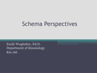 Schema Perspectives