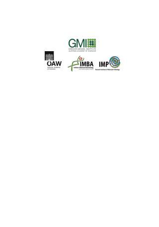 Recess Poster IMP IMBA GMI 01