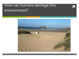How can humans damage this environment?