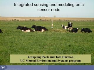 Integrated sensing and modeling on a sensor node