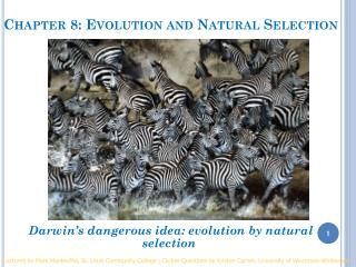 Chapter 8: Evolution and Natural Selection