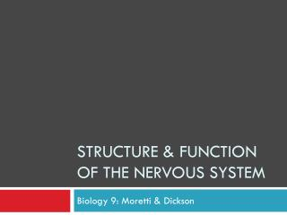 Structure & Function of the Nervous System