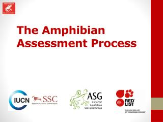 The Amphibian Assessment Process