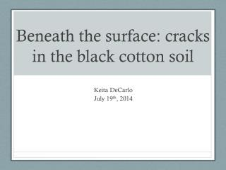 Beneath the surface: cracks in the black cotton soil