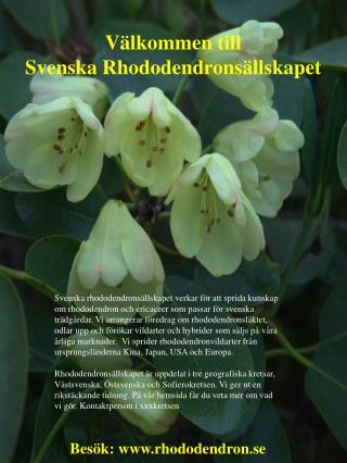 Välkommen till  Svenska  Rhododendronsällskapet