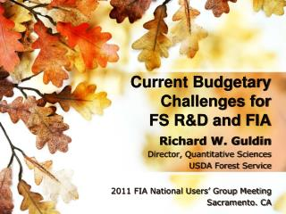 Current Budgetary Challenges for FS R&D and FIA