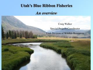 Utah's Blue Ribbon Fisheries An overview