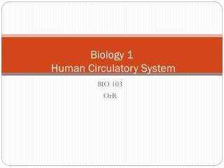 Biology 1 Human Circulatory System