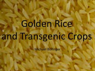 Golden Rice and Transgenic Crops