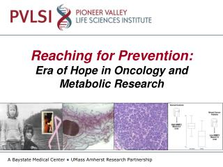 Reaching for Prevention:  Era of Hope in Oncology and Metabolic Research