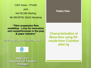 Characterization of fibers flow using EIT: results from Coimbra pilot rig
