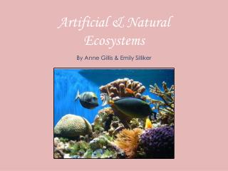 Artificial & Natural Ecosystems