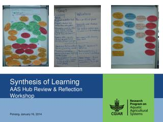 Synthesis of Learning AAS Hub Review & Reflection Workshop