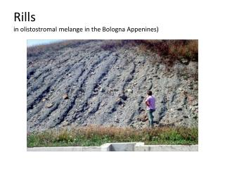 Rills  in  olistostromal melange  in the Bologna  Appenines )