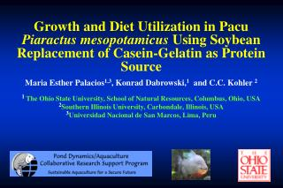 Growth and Diet Utilization in Pacu  Piaractus mesopotamicus Using Soybean Replacement of Casein-Gelatin as Protein Sour